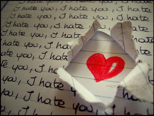 Love or hate - decide